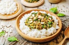 Lenticchie, curry degli spinaci del burro di arachidi con riso Fotografie Stock Libere da Diritti