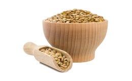 Lenticchie verdi in ciotola di legno e mestolo isolati su fondo bianco nutrizione bio- Ingrediente di alimento naturale fotografie stock libere da diritti
