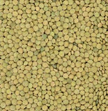 Lentil background Stock Photo