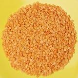Lentil - colorfull food Stock Images