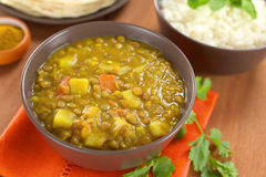 Lentil Curry. Bowl of spicy Indian dal (lentil) curry prepared with carrot and potato, rice and curry powder in the back and cilantro leaf on the side (Selective Royalty Free Stock Image