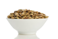 Lentil grain Royalty Free Stock Image