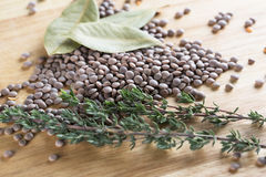 Lentil and Herbs Royalty Free Stock Photography
