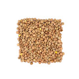 Lentil isolated on white background Stock Image