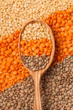 Lentil mix Royalty Free Stock Image