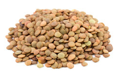 Lentil On White Background Royalty Free Stock Photography