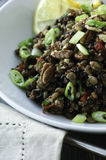 Lentil and Rice Salad Royalty Free Stock Photo