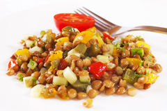 Lentil Salad Stock Photography