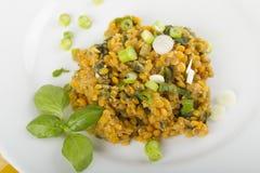 Lentil salad Royalty Free Stock Photography