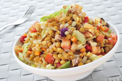 Lentil salad Royalty Free Stock Images