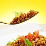 Lentil salad Stock Images