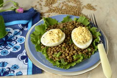 Lentil salad with egg and cream curry Stock Photography