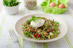 Lentil salad with poached egg Stock Photos