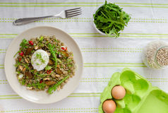 Lentil salad with poached egg Royalty Free Stock Image
