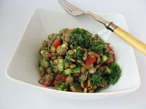 Lentil salad with ramson. Lentil salad with cucumber, tomato,wild garlic and lemon juice Stock Image