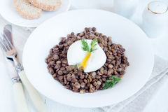 Lentil and soft poached egg Stock Image