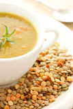 Lentil soup. In white bowl Stock Photos
