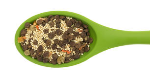Lentil Soup Mix On A Green Spoon Royalty Free Stock Image