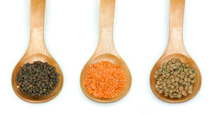 Lentil split and lentil canada in wooden spoon stock image