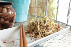 Lentil sprouts salad on plate Stock Images