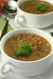 Lentil stew Royalty Free Stock Image