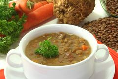 Lentil stew Stock Images