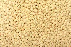 Lentil texture background Royalty Free Stock Photography