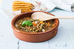 Lentil and vegetables Royalty Free Stock Photo