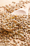 Lentil on wooden spoon Royalty Free Stock Image