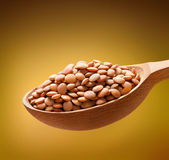 Lentil in a wooden spoon Stock Images