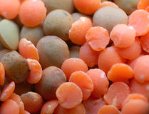 Lentile. Macro pattern of mix of red and green lentil. Asian food Royalty Free Stock Photo
