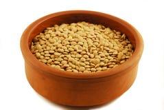 Lentilha Imagem de Stock Royalty Free