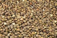 Lentilhas Foto de Stock Royalty Free