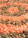 Lentilhas Imagens de Stock Royalty Free