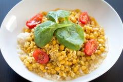 Lentilhas com arroz e espinafres e tomates verdes Fotos de Stock Royalty Free
