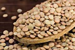 Lentilhas - culinaris da lente fotos de stock royalty free
