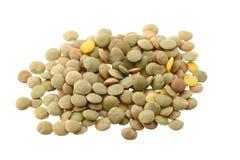Lentilhas (culinaris da lente) no branco Fotos de Stock Royalty Free