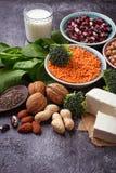 Lentilhas, grão-de-bico, porcas, feijões, espinafres, tofu, brócolis e qui Foto de Stock Royalty Free