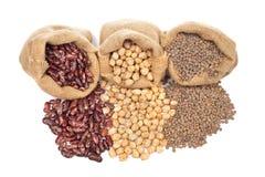 Lentilhas, grãos-de-bico e feijões foto de stock royalty free