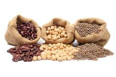 Lentilhas, grãos-de-bico e feijões Imagens de Stock Royalty Free
