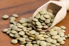 Lentilhas verdes orgânicas secas Imagens de Stock