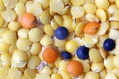 Lentille photos stock