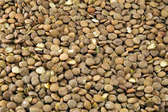 Lentilles Photo libre de droits