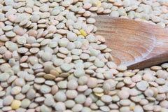Lentilles et cuillère Photographie stock