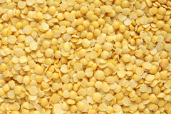 Lentilles jaunes Images libres de droits