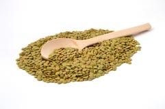 Lentilles vertes sèches Photo stock