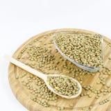 Lentilles vertes sur le conseil en bois Nourriture végétarienne saine Photo stock