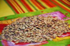 Lentils. Traditional dried, tasty and delicious lentils in Spain Royalty Free Stock Image