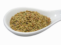 Lentils. In white bowl isolated on white studio background Stock Image