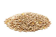 Lentils Stock Photography